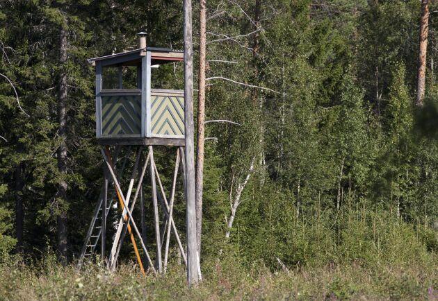 Jakttorn över hela Sverige har vandaliserats och välts. Arkivbild.