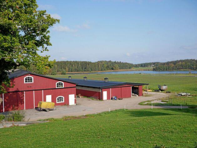 Vasseröds gård köpte han 1995. Först nu, 25 år senare, har han lyckats utforma gården så som han vill ha den. Och han märker att det finns ett rikt djurliv i natruren kring gården.