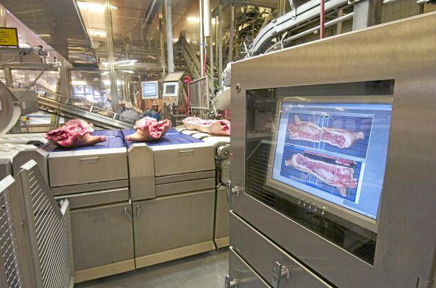 Efterfrågan på griskött från EU är stor i framför allt Asien. Eftersom antalet grisar har minskat på senare tid leder det till att slakterierna nu får betala mer till uppfödarna.