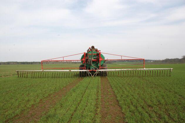 I projektet undersöks bland annat om gödsellukten minskar efter tillsats av ett bakteriepreparat.