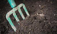 Gotländskt ultimatum om kontroversiell kompost
