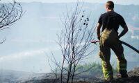 """""""Frivilliga"""" vill ha betalt för skogsbrandsinsatser"""