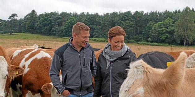 Så blev de årets nötköttsföretagare i Skåne