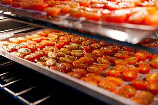 Torka tomater i ugn och förvara på burk.