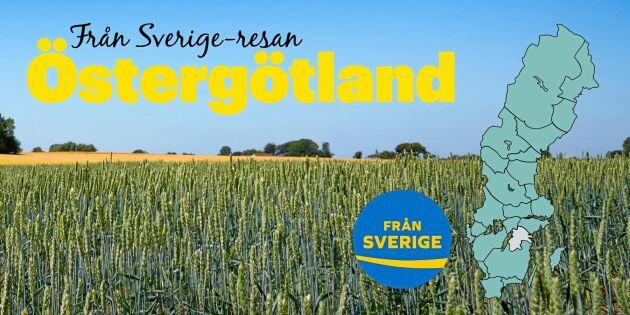 Från Sverige-resan: Östergötland med smaker av alla de slag