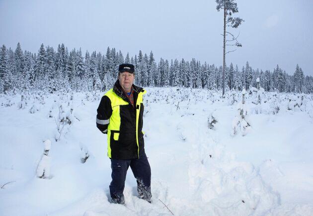 Skogsägaren Dan Lindberg fick något hundratal plantor sönderkörda förra vintern på sin plantering i Strittjomvare, tre mil från Arvidsjaur.