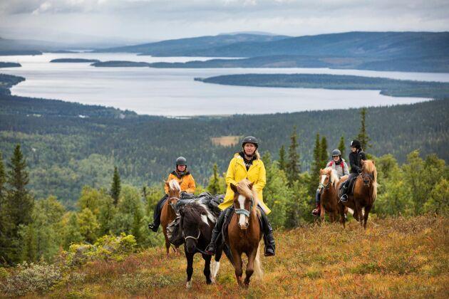Turen går uppför, hästarna klättrar och bär villigt sin börda. Långt därnere ligger fjällbyn Jormvattnet och de storslagna Jormsjöarna.