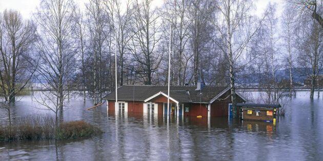 Karta: Så kraftig kan vårfloden bli där du bor