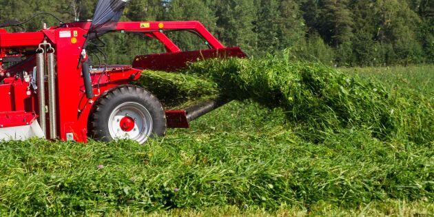 Lönsamt att utvinna protein från vallgräs