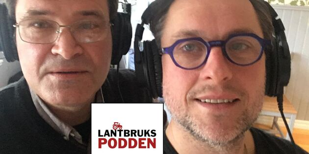 """Rickard Axdorff: """"Sälj Sveaskog och rädda produktiv skogsmark"""""""
