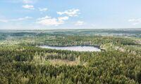 Stora Ensos skog i Halland såld
