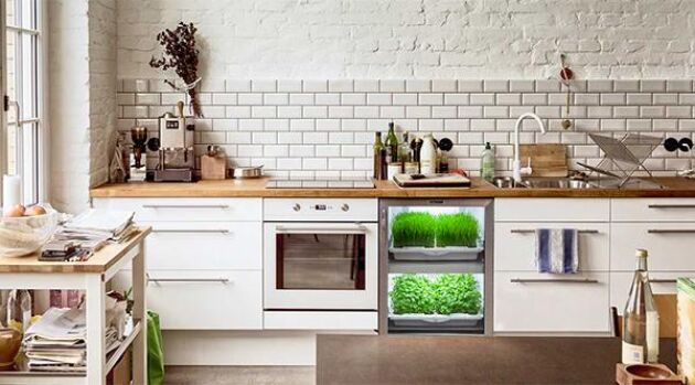 Integrerad odling i köket – varför inte? Urban cultivators är lika stort som ett mindre kylskåp.