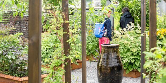 Öppen Trädgård: Rostig nypremiär i Lappland