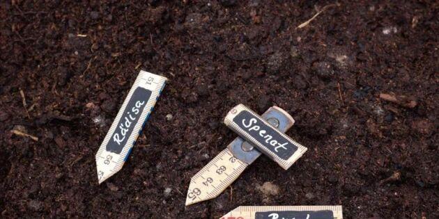 Återbruka tumstocken! Gör fina odlingsskyltar