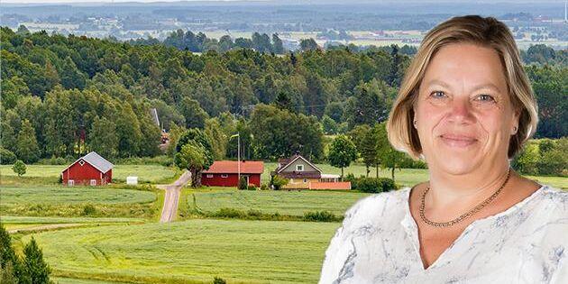 Vad väntar landsbygdens nyinflyttade?