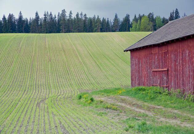 Den otidsenliga lagen sätter käppar i hjulen för många som gjort generationsskifte eller köpt mindre gårdar, anser debattören.