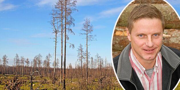 De ska stämma staten för barkborreskador