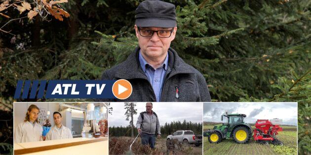 ATL TV: Han satsar stort på medel mot vilt