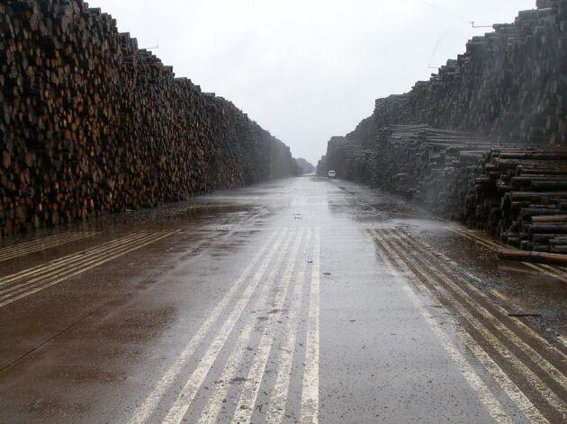Efter stormen Gudrun fanns plötsligt enorma mängder virke på marknaden. Många frågor om priser, lagring och kostnader uppstod över en natt för många skogsägare. I Byholma lagrades en stor del av det omkullblåsta virket.