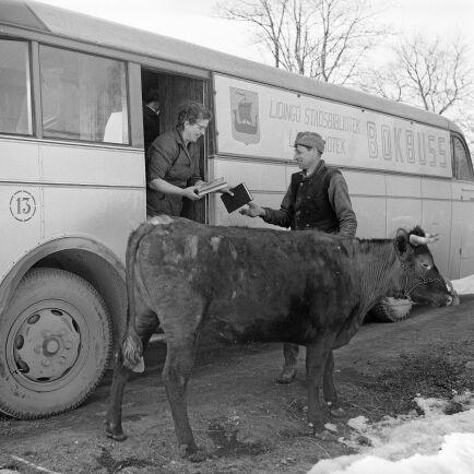 Bokbussen kommer till landsbygden utanför Stockholm, en boksugen lånare har kon med sig. (1950-tal)