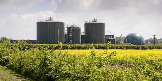 Höga förväntningar på biogasutredning