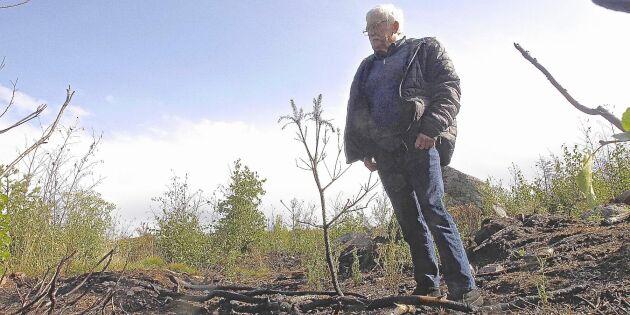 Fick två somrar förstörda av anlagda bränder