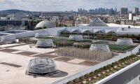 Här ska 1,4 hektar grönsaker odlas – på ett tak