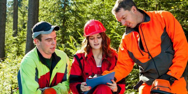 Skogsnolia och Sveaskog satsar på jämställdhet