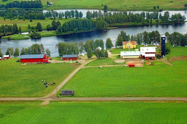 Familjen Ragnarsson bor fantastiskt vackert på Björkbackens gård i Kalix.