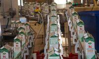 Arla höjer mjölkpriset med 9,5 öre
