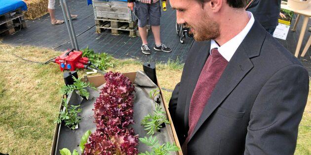 Odlingsduk av trä vann innovationstävling