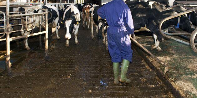 Trakasserier mot djurbönder kartläggs