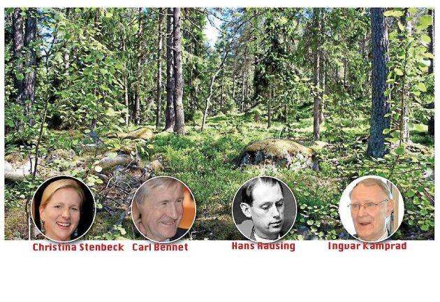 Många av Sveriges miljardärer kan tacka det gröna guldet för en hel del av sitt eget gula.