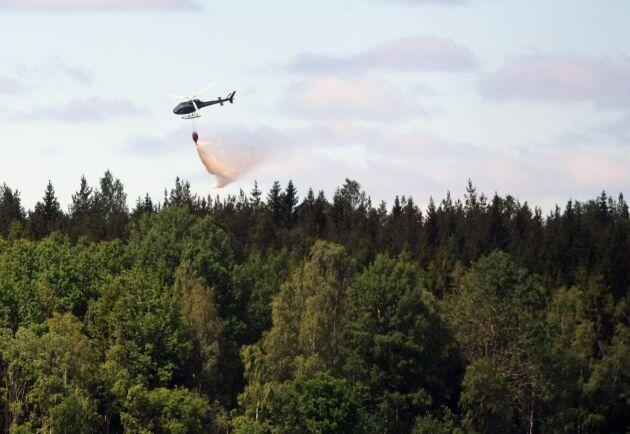 En kvinna är häktad, misstänkt för att ha startat den skogsbrand som bröt ut i Broddbo i Sala kommun i tisdags.