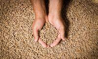 Brist på pellets i stora delar av Europa
