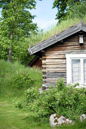 """Martin """"Frallan"""" Szanto, Lisa Szanto och Anders Thunarf arrenderar Tivedstorp sedan tre och ett halvt år. De bodde förut utanför Göteborg, men sökte sig bort från storstaden."""