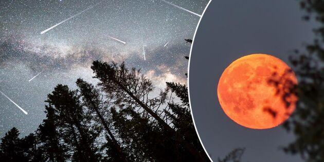 6 mäktiga rymdfenomen att hålla utkik efter i sommar