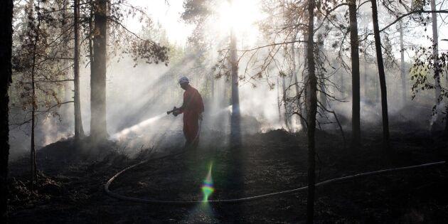 Löfven lovar stötta branddrabbade skogsägare