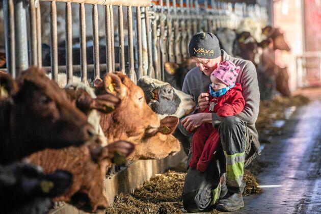 Närsidans gård har totalt 450 djur, både mjölkkor och uppfödning av köttraskvigor och stutar.