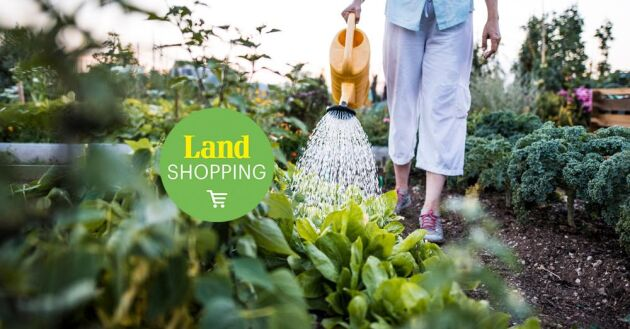 I princip har du redan det gödsel som krävs hemma i trädgården, egentligen är gräsklipp, kompost och ditt eget kiss det enda som behövs.