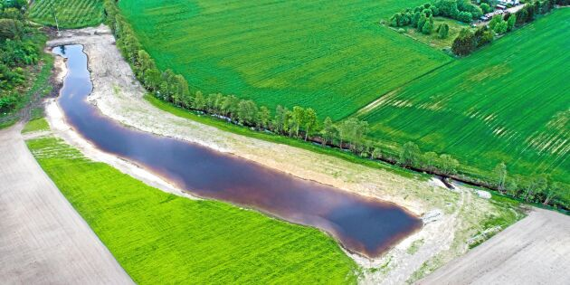 ATL TV: Solenergi fyller våtmarken