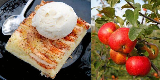 Baka klassisk äppelkaka i långpanna