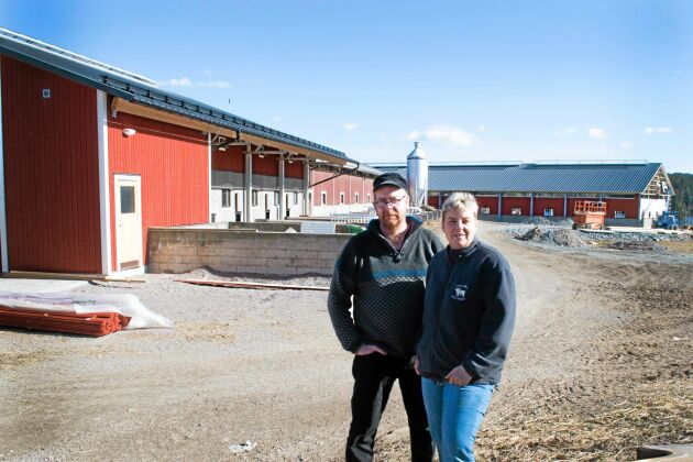 """Anders och Maria Engvall bygger nytt stall efter storbranden. """"Vi gör tre års arbete på halva tiden, dessutom i någon form av chocktillstånd"""", säger Anders Engvall."""