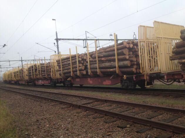 Upprustad järnväg och en ny virkesterminal ska sätta värde på virket som säljs av skogsägare i Västerdalarna