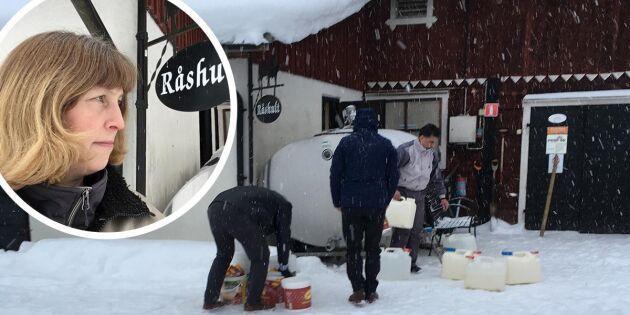 Bonden Ulrika delade ut 3 500 liter mjölk – gratis