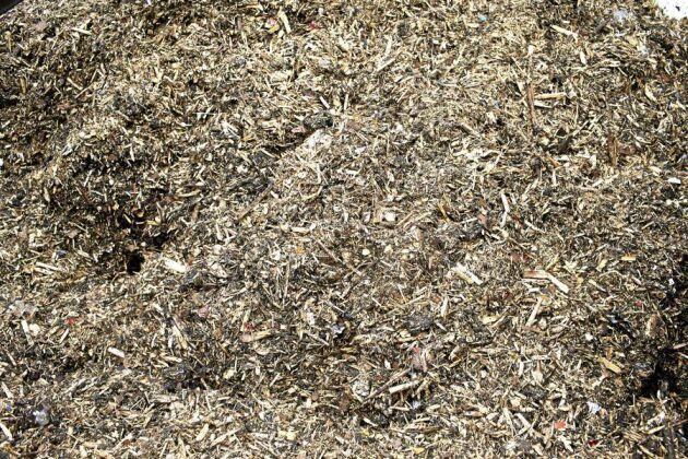 Genom att blanda avloppsslam med flis får man fram ett bränsle som går bra att elda i värmeverk. Träflisen ser också till att neutralisera lukten.