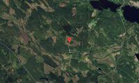 Skogsfastigheter i Västerbotten såld