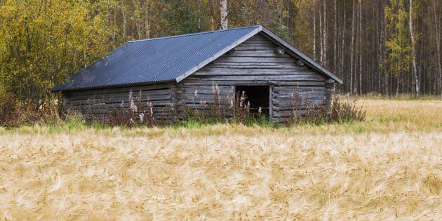 Nytt stöd till odlare i norr