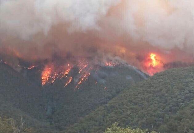 I takt med att temperaturerna stiger till helgen väntas nya bränder. Hittills uppskattas totalt 5 miljoner hektar ha eldhärjats i hela Australien sedan november.