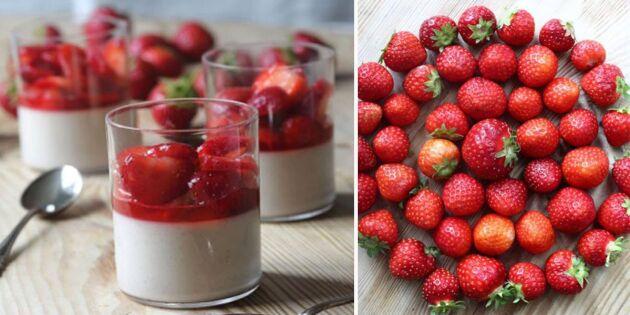 Pannacotta med jordgubbar och fläder